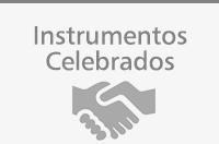 Instrumentos Celebrados